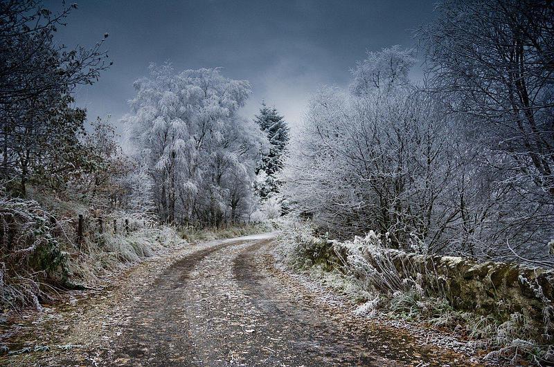 UK Winter Economy Plan Explained