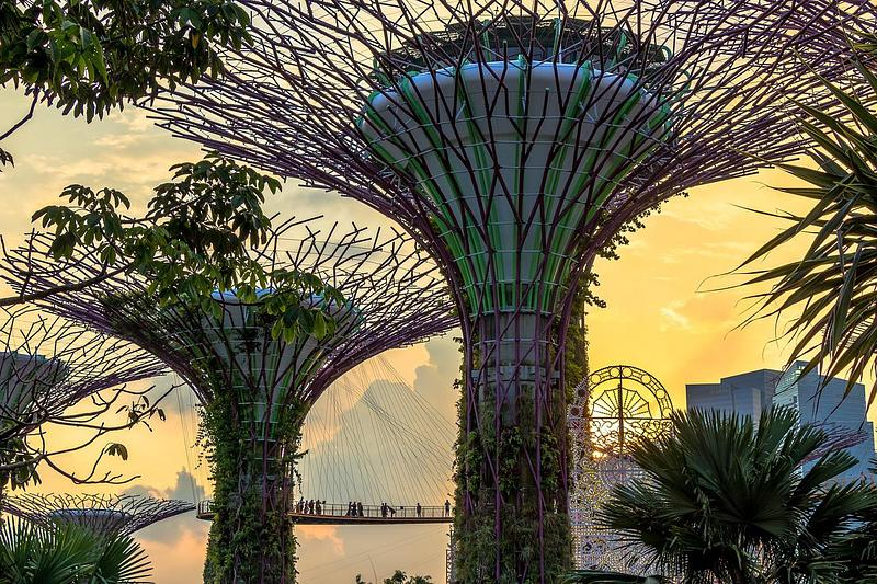Implementing Singapore's New NRIC Advisory Guidelines